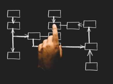 szervezet-fejlesztes